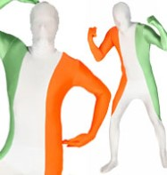 Morphsuit Irish Flag - Adult Costume Fancy Dress