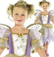 Fairy Princess - Child Costume Fancy Dress