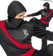 Ninja - Adult Costume Fancy Dress