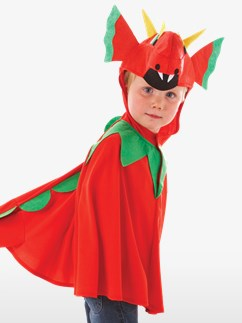 Friendly Dragon - Child Costume Fancy Dress