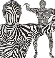 Morphsuit Zebra Print - Adult Costume Fancy Dress