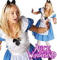 Alice in Wonderland - Adult Costume Fancy Dress