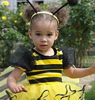 Bumble Bee - Toddler Costume Fancy Dress