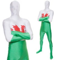 Morphsuit Wales - Adult Costume Fancy Dress