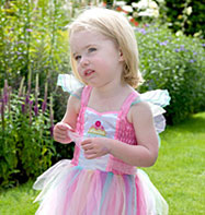 Fairy Cupcake - Toddler Costume Fancy Dress