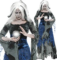 Sinful Soothsayer - Adult Costume Fancy Dress