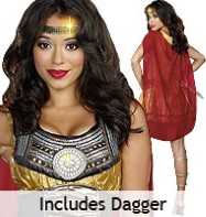 Golden Gladiator - Adult Costume Fancy Dress