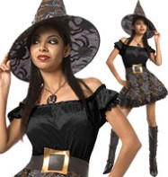 Spider Witch - Adult Costume Fancy Dress