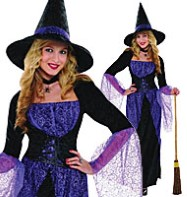 Pretty Potion Witch - Adult Costume Fancy Dress