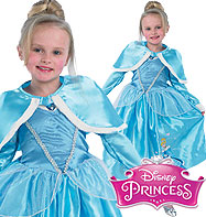 Cinderella Winter Wonderland - Child Costume Fancy Dress