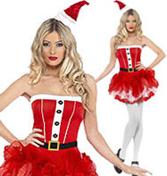 Santa Tutu - Adult Costume Fancy Dress