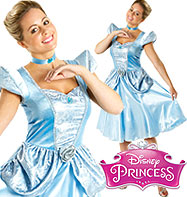 Cinderella - Adult Costume Fancy Dress
