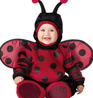 Itty Bitty Lady Bug - Baby Costume Fancy Dress