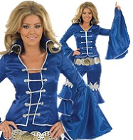 Blue Dancing Queen - Adult Costume Fancy Dress