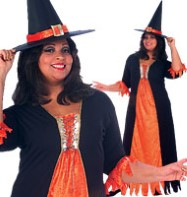 Gothic Witch - Adult Costume Fancy Dress