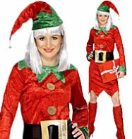 Red Elf - Adult Costume Fancy Dress