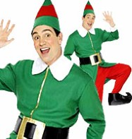 Male Elf - Adult Costume Fancy Dress
