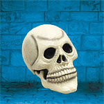 Large Skull Head (Rubber)