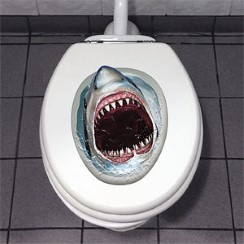 Shark Toilet Decoration - 43cm