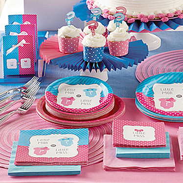 Gender Reveal Party Supplies Decorations Party Delights
