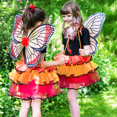 Fantastic Fairies