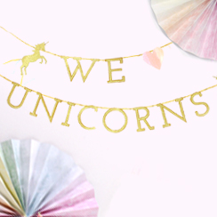 Unicorn Decorations