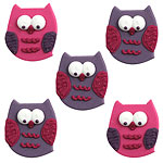 Owl Pal Sugar Toppers - Cake Decorations