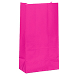 Bright Pink Party Bags - Paper 25cm