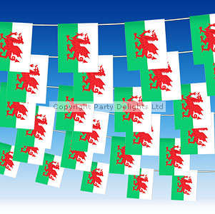 St. David's Day Plastic Welsh Flag Bunting - 7m