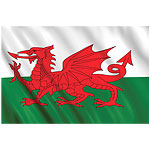 5ft Welsh Cloth Flag
