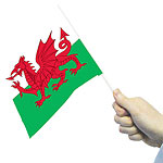 Welsh Handwaving Flags