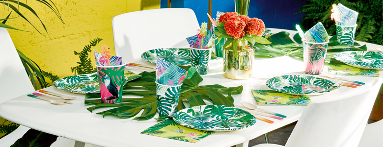 Tropical Fiesta Party Supplies