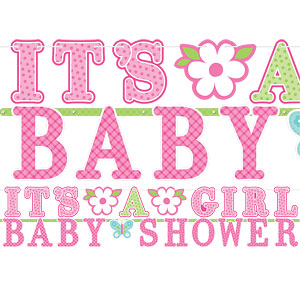 Welcome baby girl letter banner for Welcome home decorations for baby